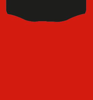 stocke-hjarta-logo